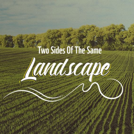 Two-Sides of the same Landscape