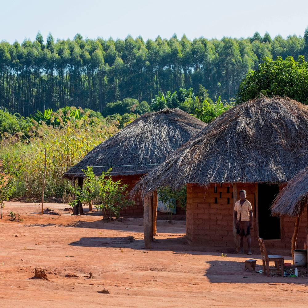 Africa's social prosperity and landscape's resilience