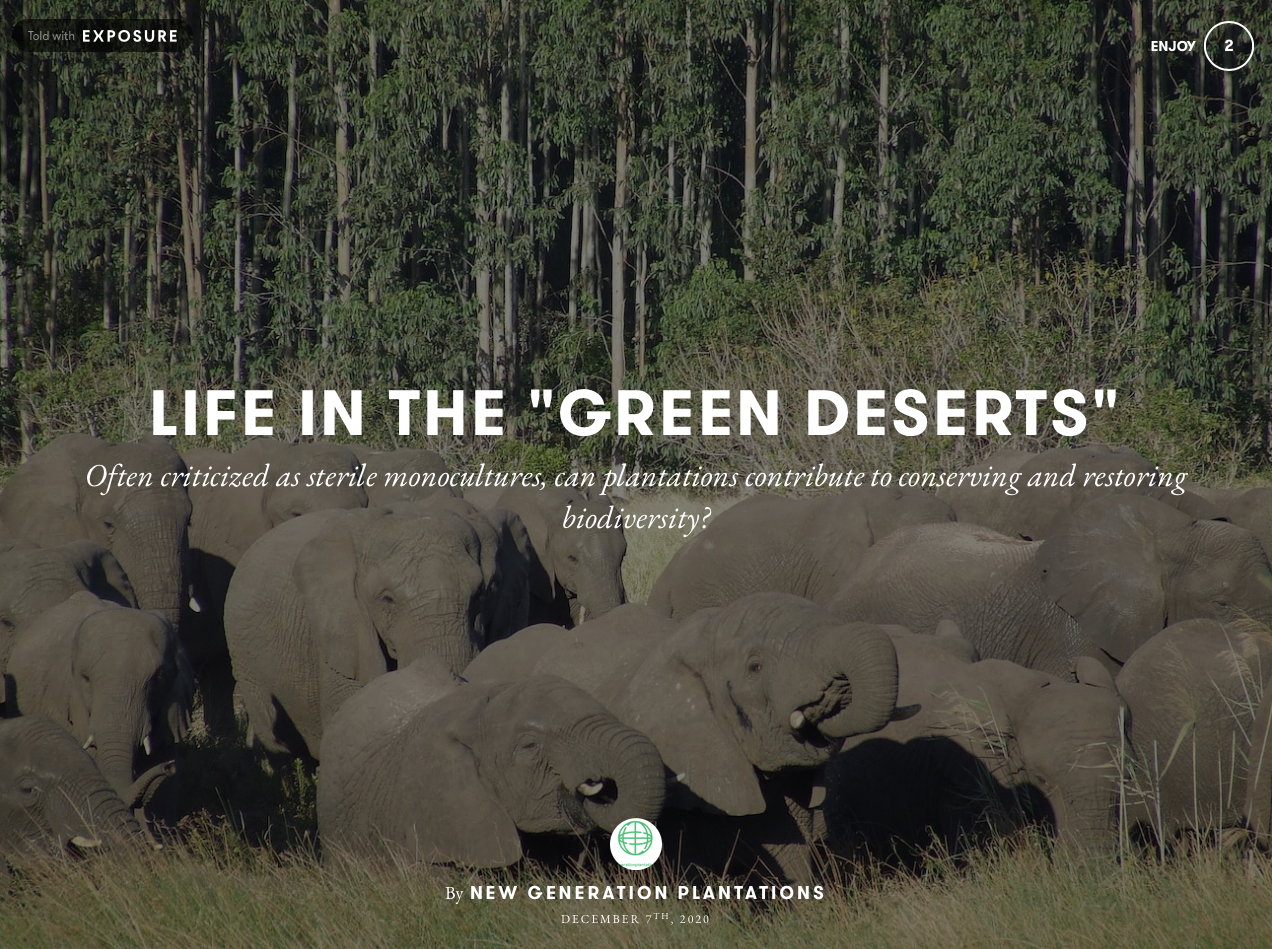 Blog - Life in the 'Green Deserts'